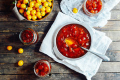 Plums jam in a small cup. Homemade spicy mirabelle, greengage pl Royalty Free Stock Photography