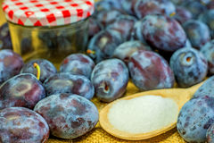 Plums for jelly Royalty Free Stock Photo