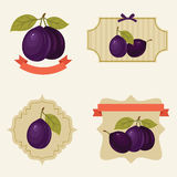 Plums labels and tags Royalty Free Stock Image