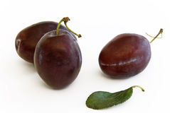 Plums with leaf. Three Plums with one leaf lying in front stock images