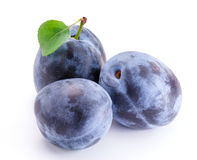 Plums with leaf Royalty Free Stock Image