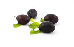Plums and leaves Royalty Free Stock Image