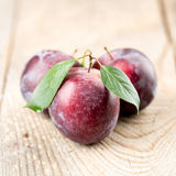 Plums with leaves Stock Image