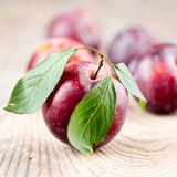 Plums with leaves Royalty Free Stock Photo