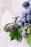 Plums with leaves Royalty Free Stock Images