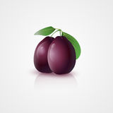 Plums with leaves Royalty Free Stock Photos