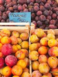 Plums at the market Stock Image