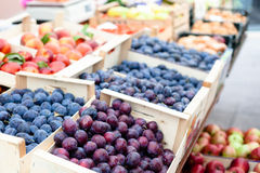 Plums market Royalty Free Stock Photos