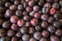 Plums on the market. Nature. Stock Photo
