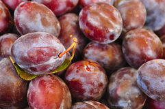 Plums in the market Royalty Free Stock Images