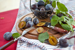 Plums in a mesh basket Stock Images
