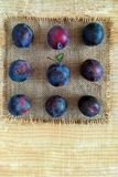 Ripe plums on a napkin. royalty free stock photos