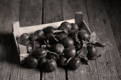 Plums over wooden textured table Royalty Free Stock Photography