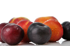 Plums, peaches and nectarines Stock Images
