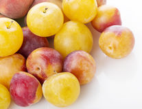 Plums and peaches Stock Images