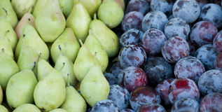 Plums and pears Royalty Free Stock Photo