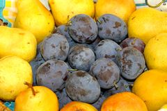 Plums and pears Stock Photography