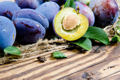 Plums Royalty Free Stock Image