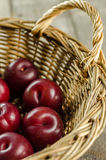 Plums in a Picnic Basket. Rich color of red plums placed on a basket stock images