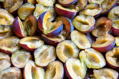 Plums pitted Stock Photo