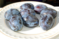 Plums on a plate Royalty Free Stock Image