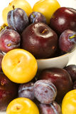 Plums and Pluots Stock Photo