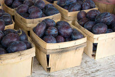 Plums in produce boxes Stock Photography