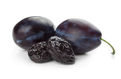 Plums and prunes Stock Image