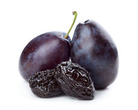 Plums and prunes Stock Images