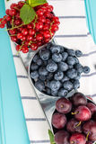 Plums, red currants and blueberries in small metal bucket Royalty Free Stock Images