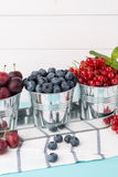 Plums, red currants and blueberries in small metal bucket Stock Images