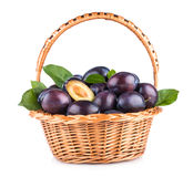 Plums. Ripe plums in a basket Royalty Free Stock Image