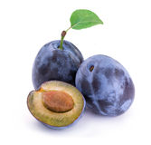 Plums. Stock Image