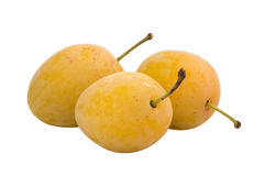 plums ripe yellow royaltyfri bild