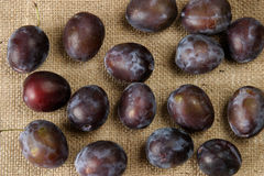 Plums on sacking. Ripe plums on burlap background Royalty Free Stock Photography