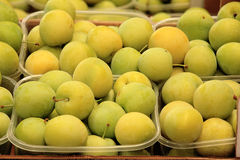 Plums seasonal fruit farming Emilia Romagna Italy. Peaches plums seasonal fruit farming Emilia Romagna Italy stock photo