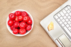 Plums, shells and laptop Royalty Free Stock Image