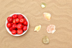 Plums and shells Royalty Free Stock Photography