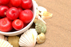 Plums and shells Royalty Free Stock Image