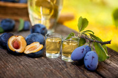 Plums and shot glasses on the table. Plums and shot glasses with rakia on the table Stock Photography