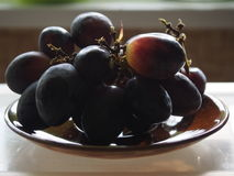 Plums. Some fresh plums on a plate Royalty Free Stock Photo