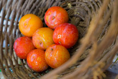 Plums. Some pluns in a basket Royalty Free Stock Photo