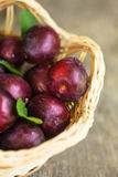 Plums on table Stock Image