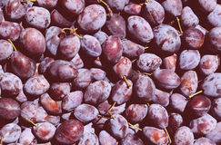 Plums Texture Stock Image
