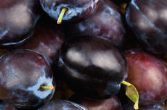 Plums texture Royalty Free Stock Images
