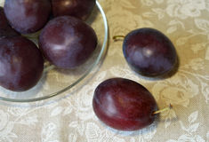 Plums on the transparent saucer on tablecloth with white roses Stock Image