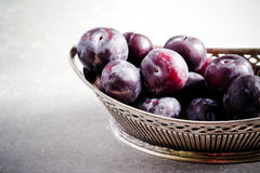 Plums in vintage vase Royalty Free Stock Photography