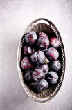 Plums in vintage vase Royalty Free Stock Images
