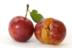 Plums on white background Royalty Free Stock Photography
