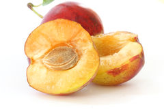 Plums on white background Stock Photography